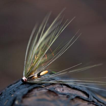 Laxfluga i mönster den osynlige spey bunden på tub